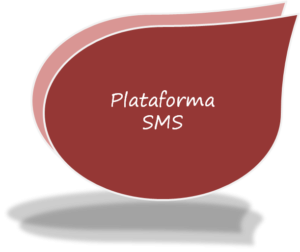 SMS-300x252